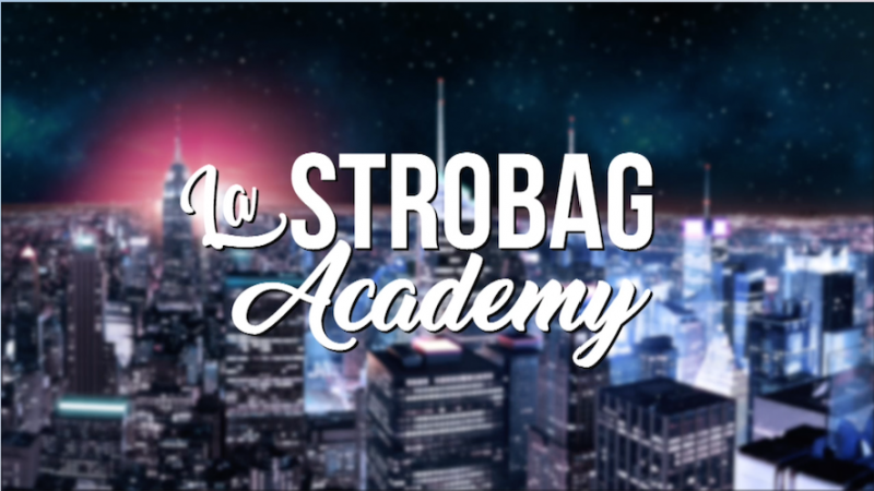 Fichier:Logo Strobag Academy.png