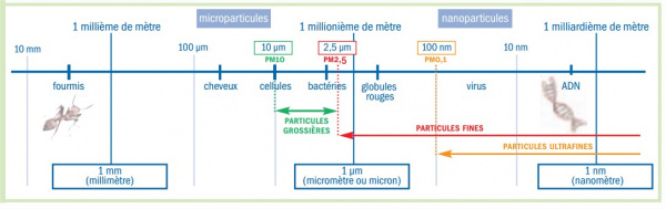 Taille particules.jpg